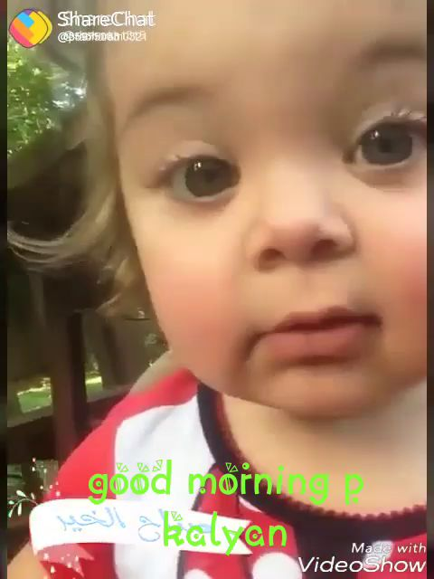 100+ Good Morning Video Status For Whatsapp
